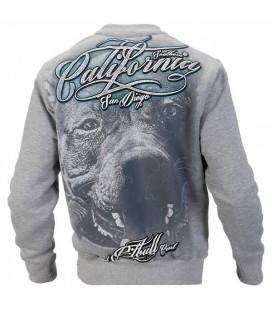 Bluza Pit Bull West Coast model California dog szara