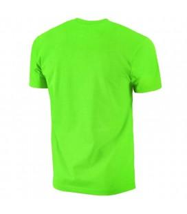 Koszulka Pit Bull model Small Logo 2018 light green